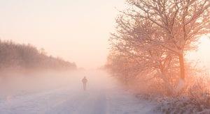 Landschapsfotografie - sneeuwlandschap Sleen Drenthe