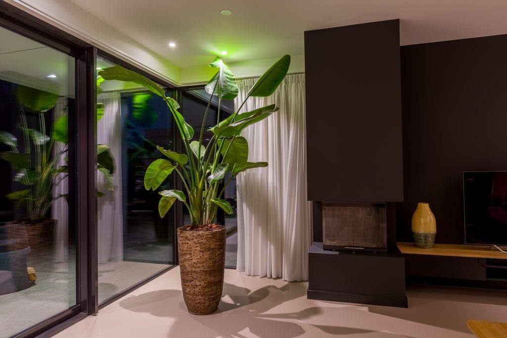 mooi verlichte plant door Muller Licht